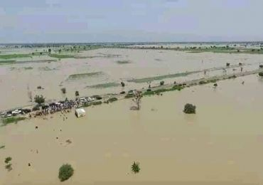 FLOOD RAVAGES HOUSES, ROADS AND RICE FARMS IN JIGAWA STATE
